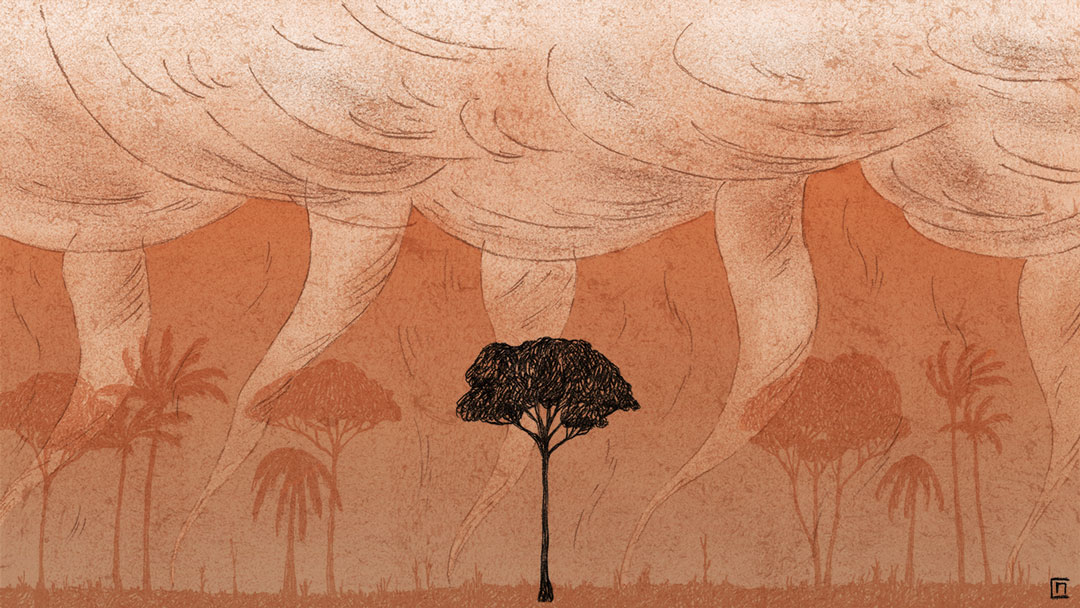 Marine_Coutroutsios_Deforestation_2copy